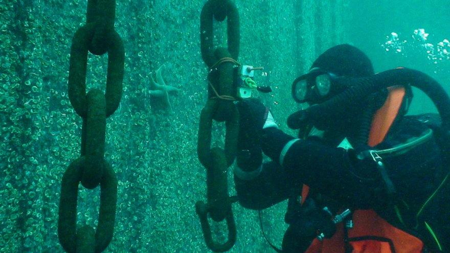Karinių jūrų pajėgų povandeninių veiksmų komanda darbo metu