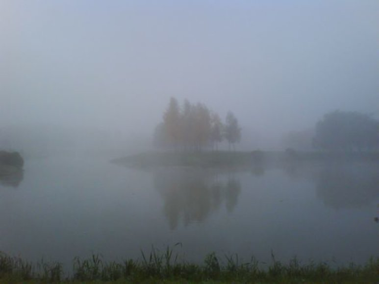 Kalniečių parkas. Laimutės Malaševičienės nuotr.