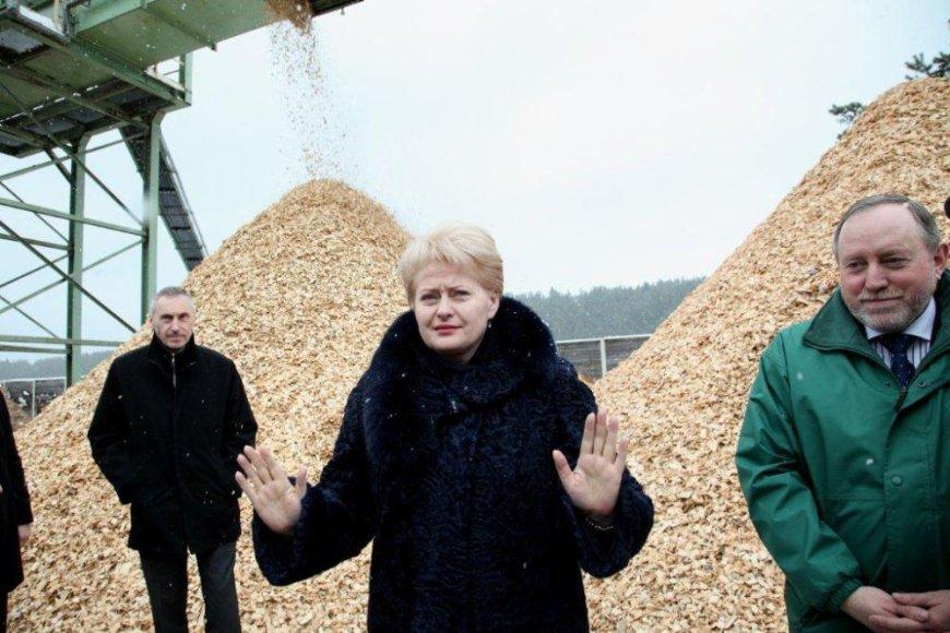 D.Grybauskaitės viltis, kad šilumą atpigins nepriklausomi tiekėjai, gali ir neišsipildyti.
