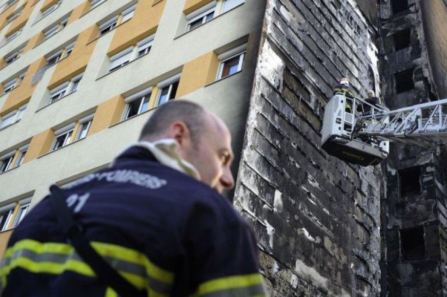 Gaisras nusiaubė pastatą Dižone