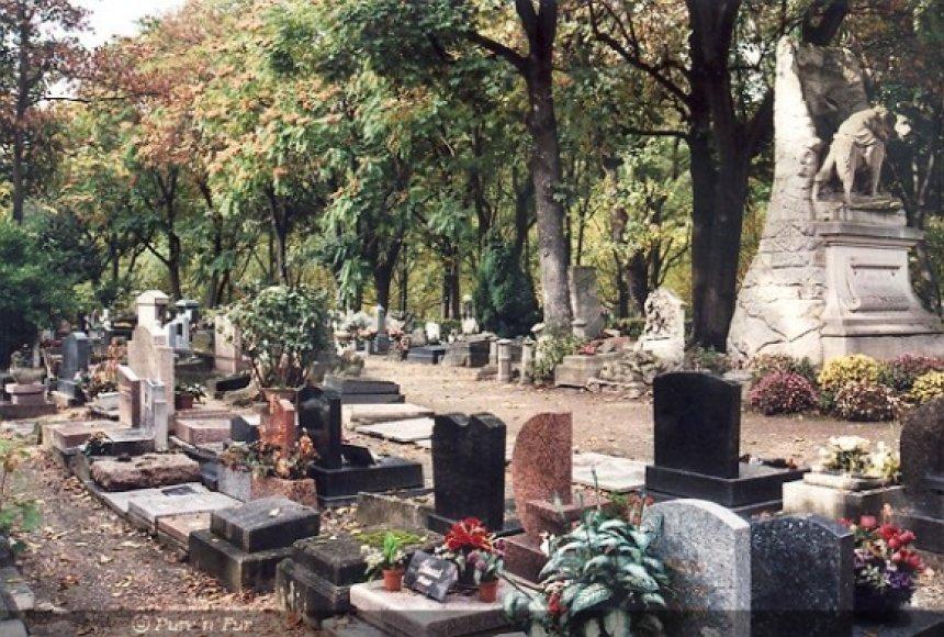 Gyvūnų kapinės Anjere prie Senos