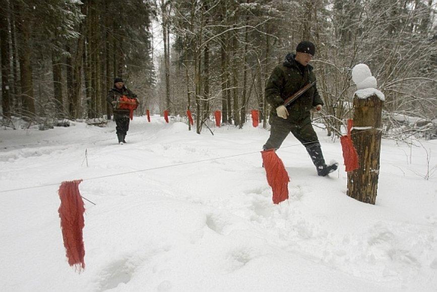 Vilkų medžioklė Baltarusijoje