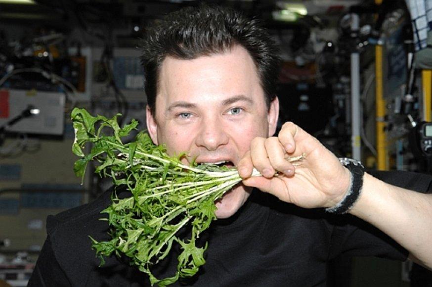 Kosmonautas Romanas Romanenka pozuoja su TKS išaugintomis salotomis.
