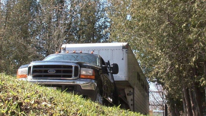Pavogtasis sunkvežimis, kuriuo vežti gyvūnai