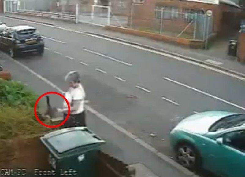 Vaizdo įrašas padėjo nustatyti katės skriaudėją.