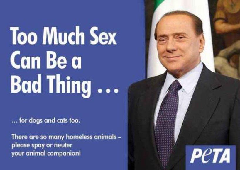 PETA tikisi, kad Silvio Berlusconi pavyzdys įkvėps šeimininkus savo augintinių sterilizacijai.