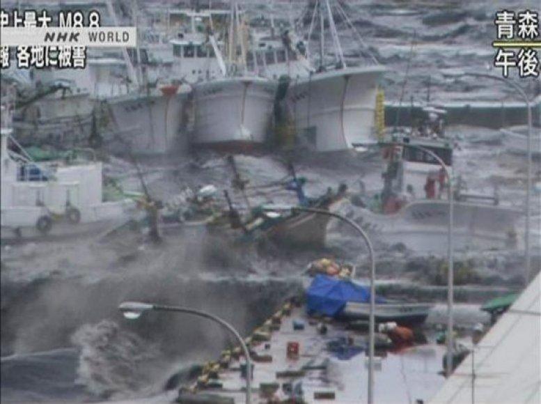 Cunamis užgriuvo Hačinohės uostą.