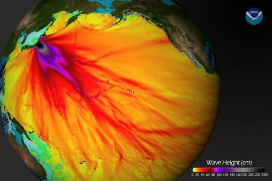 Tamsesnė spalva šiame modelyje reiškia aukštesnę cunamio bangą.