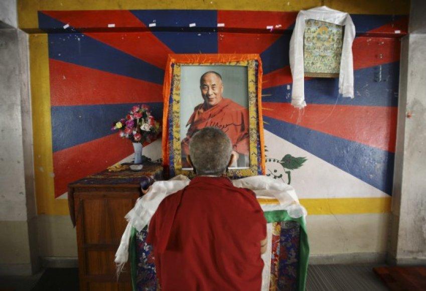 Tibeto vienuolis prie Dalai Lamos portreto