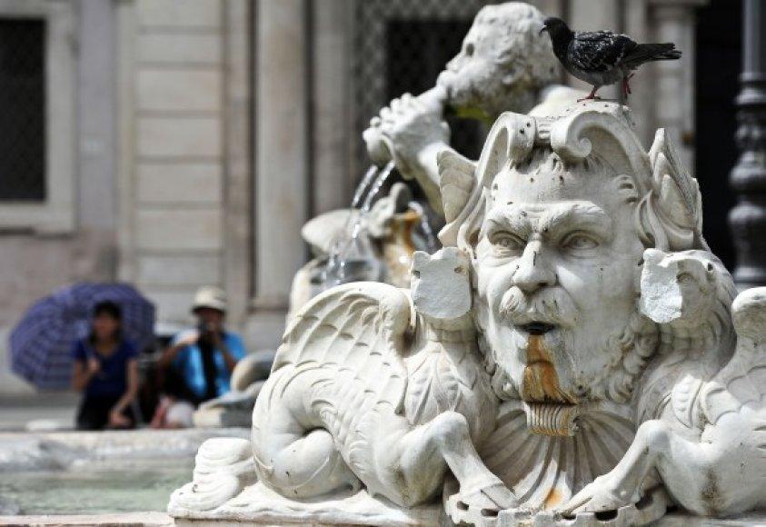 Suniokotas garsusis Romos fontanas
