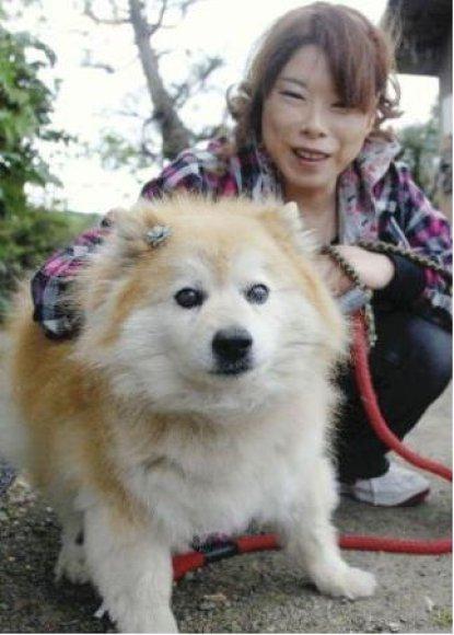 Pusuke – buvęs seniausias pasaulio šuo