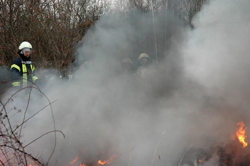 Gaisro dūmai