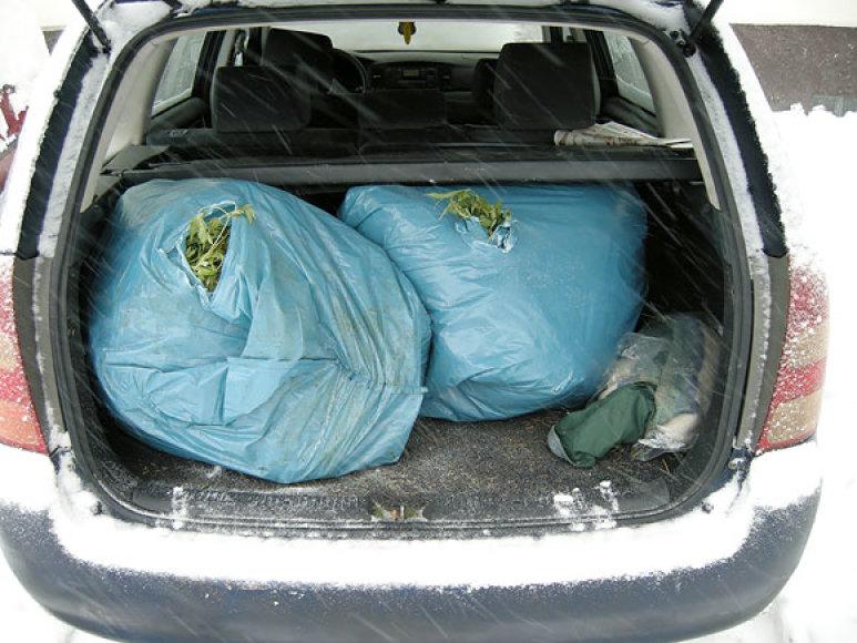 Kanapės įtariamųjų automobilyje