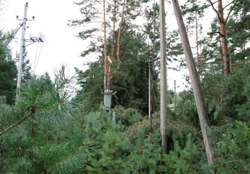 Gamtos stichijos nusiaubta elektrikų įranga