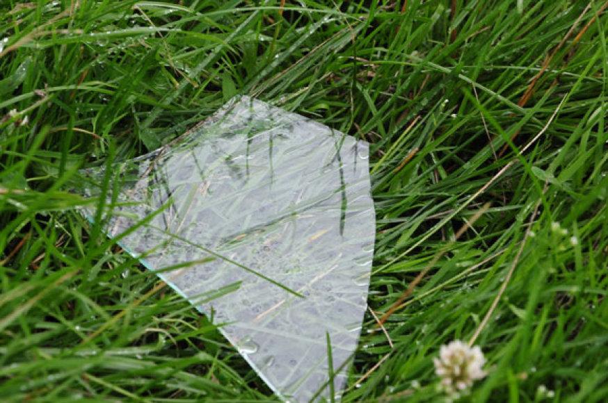Stiklas žolėje
