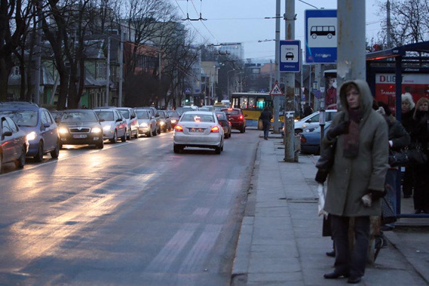 Plikledis Vilniuje