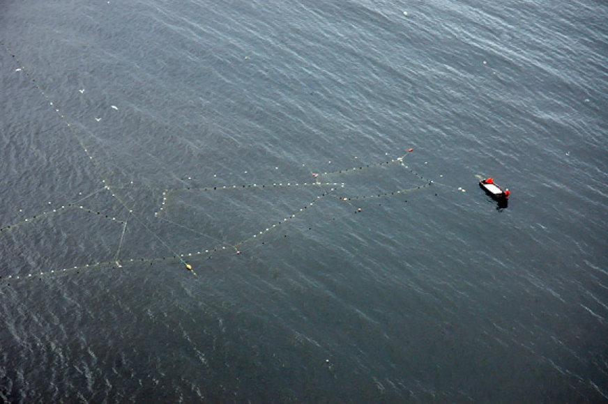 Žvejų tinklai jūroje