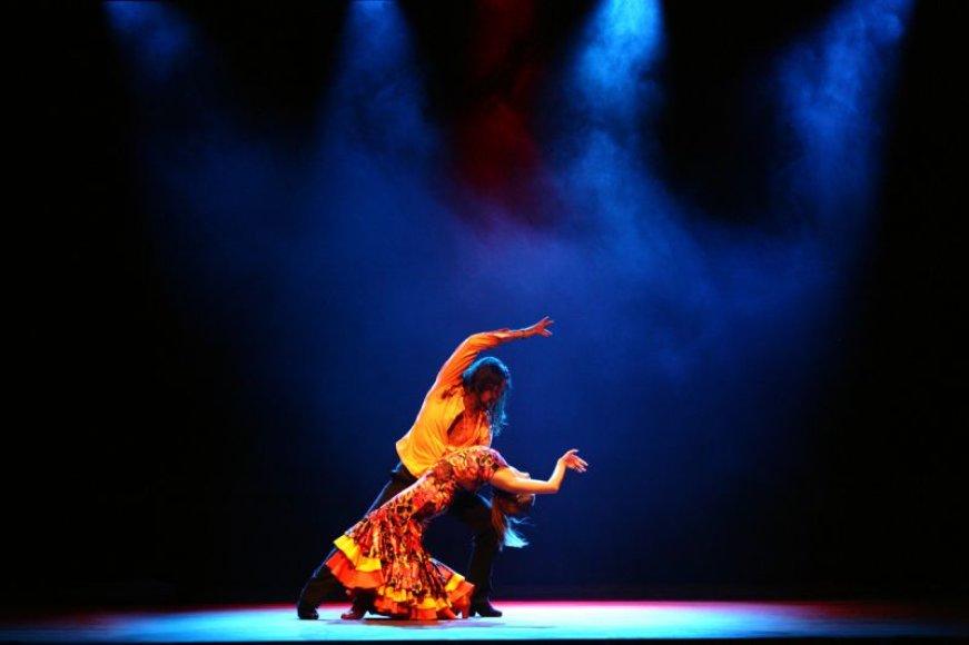 "Spektaklio ""Flamenko aitros galia"" akimirka"