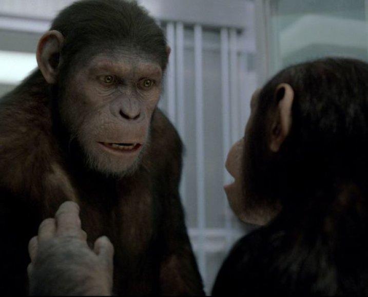 """Filmas """"Beždžionių planetos sukilimas"""""""