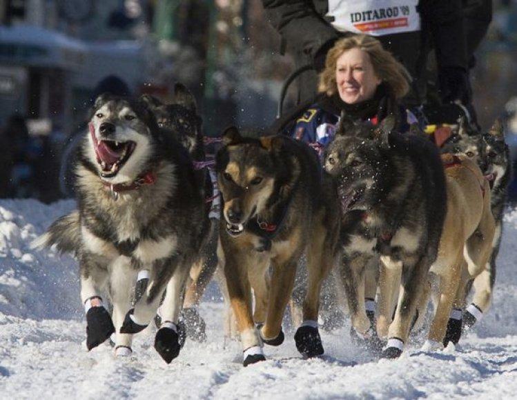 Praėjusių metų lenktynių nugalėtojas tapo Lance Mackey ir jo 11 šunų komanda.