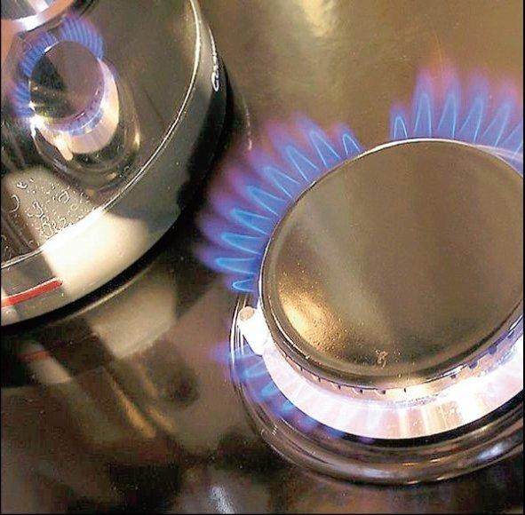 Kitais metais buitiniams vartotojams dujos brangs.