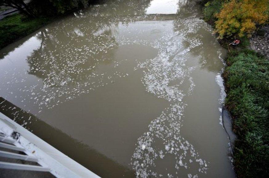 Vengrijoje išsiliejęs toksiškas šlamas pasiekė Dunojų.
