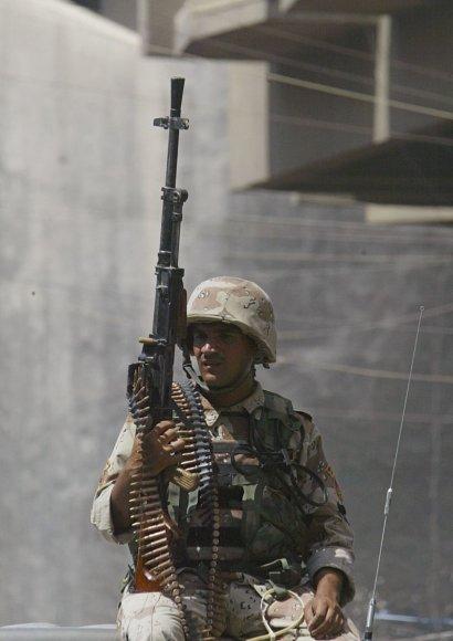 Irako karys