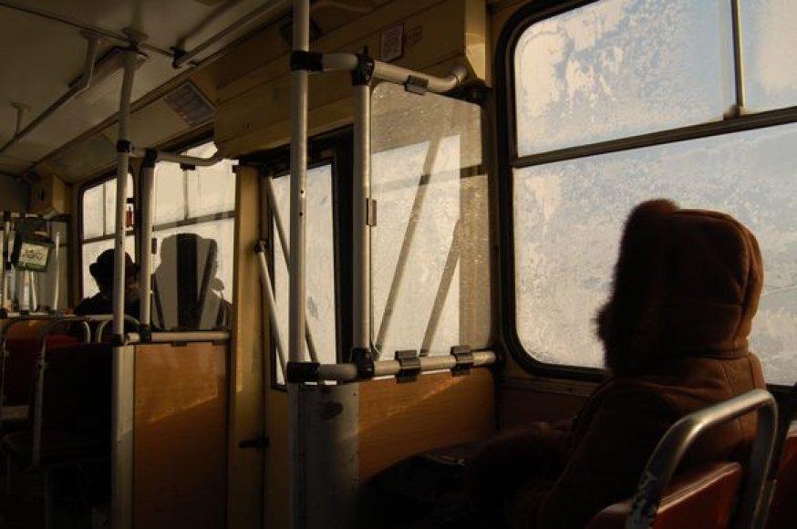 Sušalę vilniečiai, stotelėje laukdami viešojo transporto, sušilti negali net troleibusuose, nes čia temperatūra vos keliais laipsniais aukštesnė nei lauke.