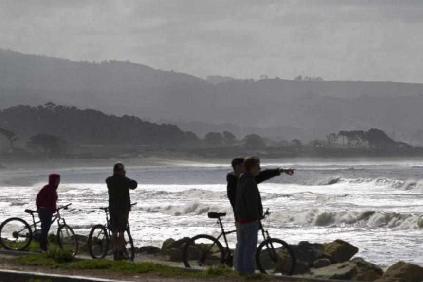 Kalifornijos pakrantė deramai sutiko cunamį