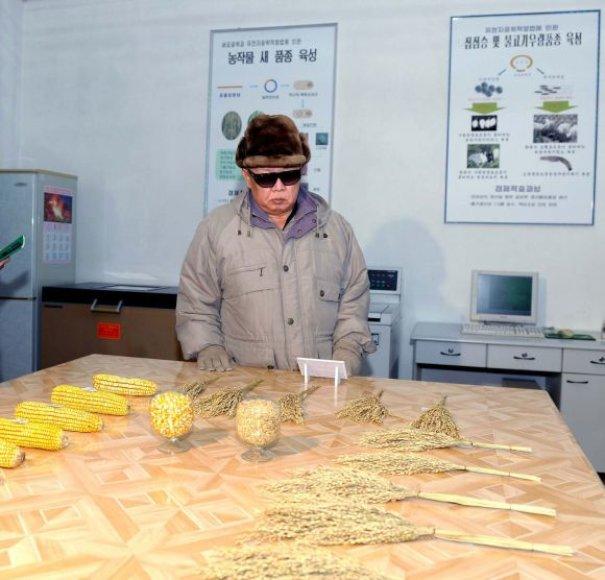 Kim Jong-ilas lankosi mokslų akademijos bioinžinerijos padalinyje Pchenjane.