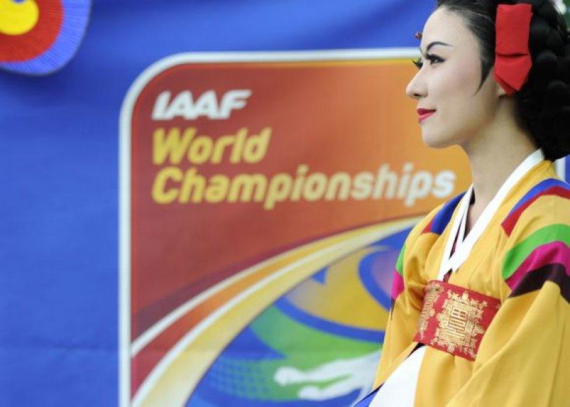 Pasaulio čempionato šeimininkams pažadėtos rekordinės premijos