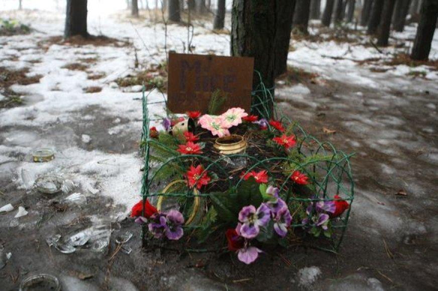 Vilniuje ir dabar veikia keletas gyvūnų kapinių, tačiau jos neoficialios ir neadministruojamos.