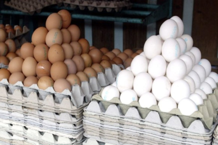 Kur vagys dės tokią krūvą kiaušinių?