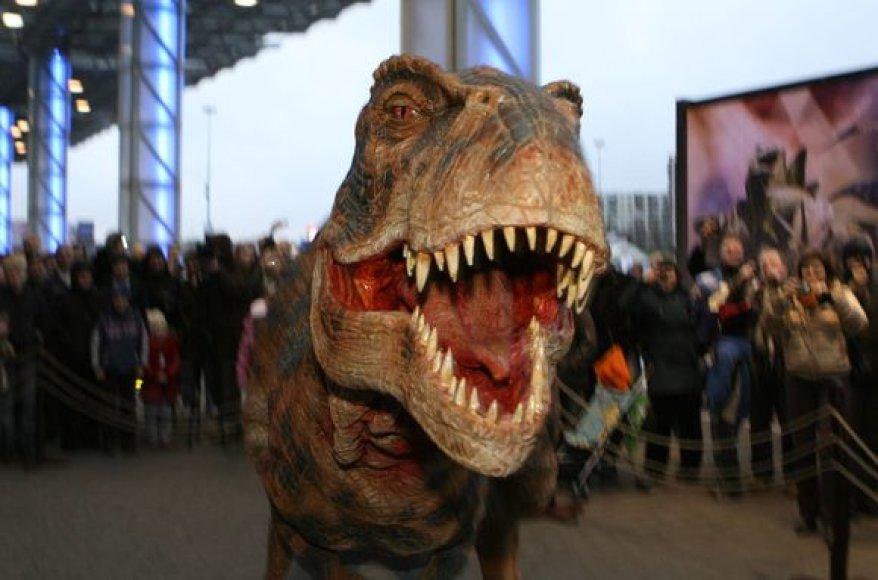 """Grėsmingas dinozauras pasirodė prie sostinės """"Akropolio"""". Natūraliai atrodantis, riaumojantis ir laisvai judantis tiranozauras kvietė į renginį """"Pasivaikščiojimas su dinozaurais"""", kuris vyks lapkričio 28-29 dienomis Vilniaus """"Siemens"""" arenoje."""
