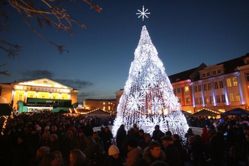 Šeštadienio vakarą Vilniuje šimtais švieselių sužibo Kalėdų eglės Rotušės ir Katedros aikštėse.