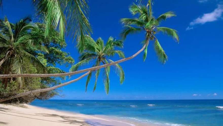 Paplūdimys Kenijoje