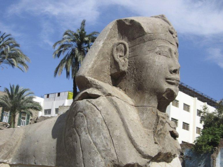 Luksore atrastas 12 sfinksų saugomas kelias