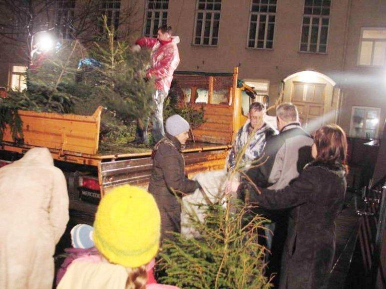"""Beveik du dešimtmečius Vilniaus mokytojų namų rengiama šventė """"Lik sveika, Kalėdų eglute"""" yra neatskiriama Vilniaus kalėdinio šurmulio pabaigos dalis."""