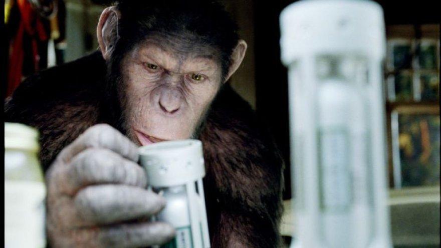 """""""Beždžionių planetos sukilimas"""""""