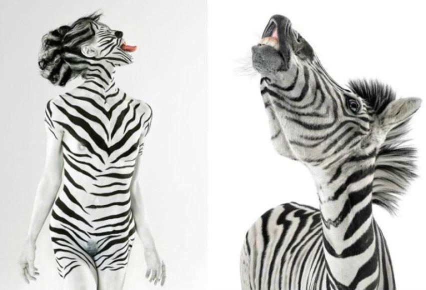 Moteris ir zebras