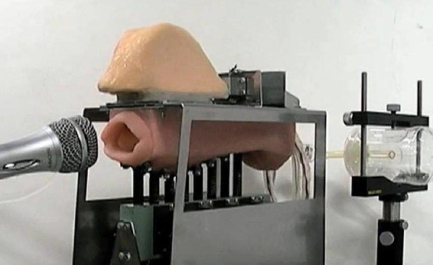 Japonijos mokslininkų sukurtas robotas-burna.