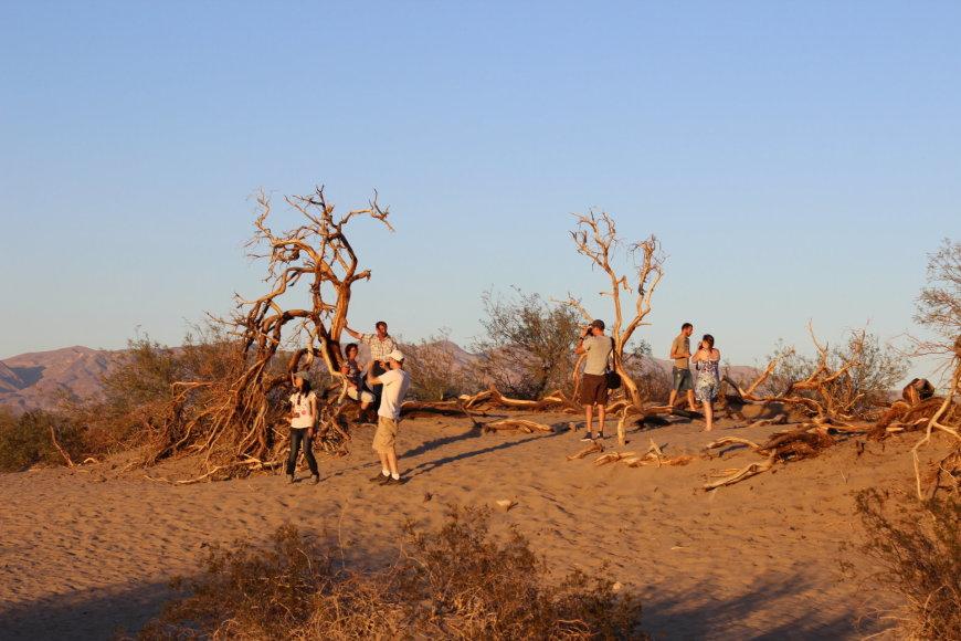 """""""T&G"""" nuotr./Smėlio dykuma Mirties slėnyje"""