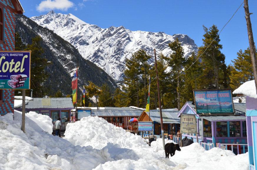 Karolio Barecko nuotr./Viešbutis Himalajuose Nepale