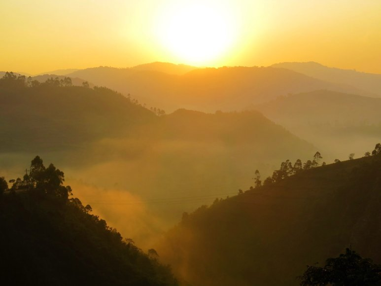 Gabrielės Štaraitės nuotr./Į Ugandą paprastai vykstama dėl gamtos ir ten esančios gyvūnijos