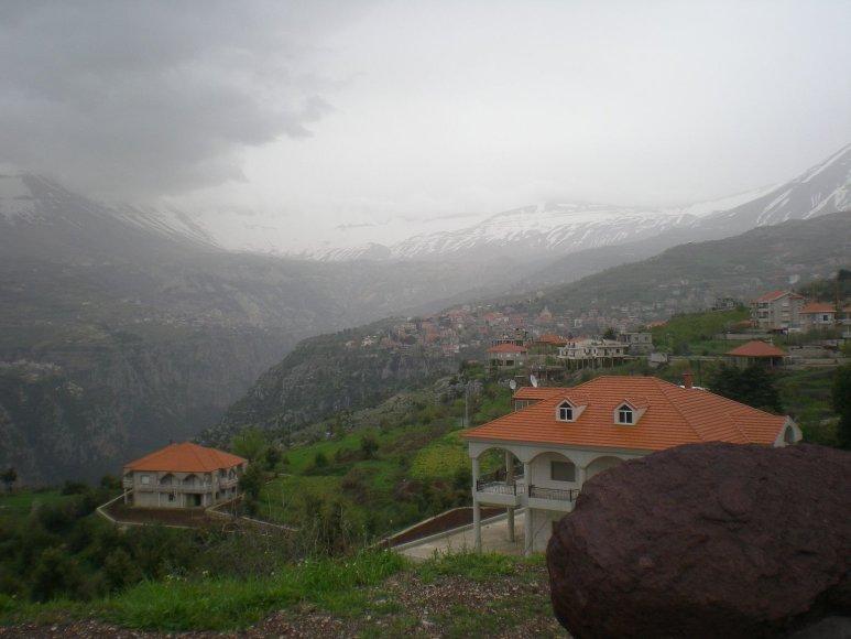 Gabijos Lebednykaitės nuotr./Libano gamta