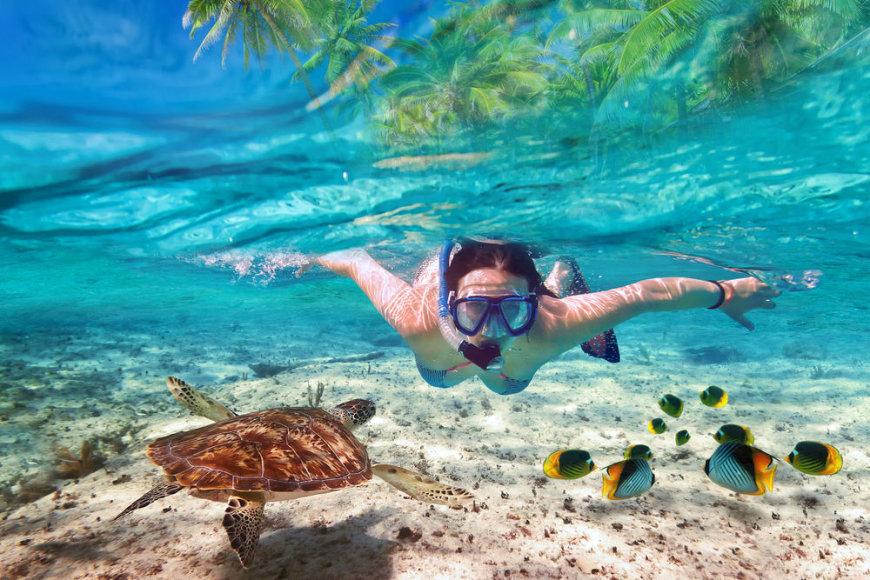 Shutterstock nuotr./Nardyti Maldyvuose tiesiog privaloma