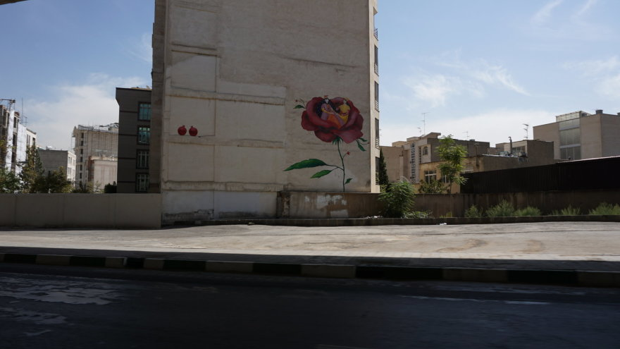 Vytauto Juršėno nuotr./Teherano namų puošyba