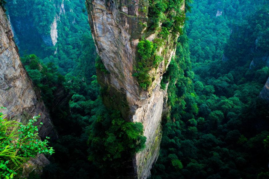 Tai ne specialieji efektai, o tikra gamta Zhangjiajie nacionaliniame miškų parke