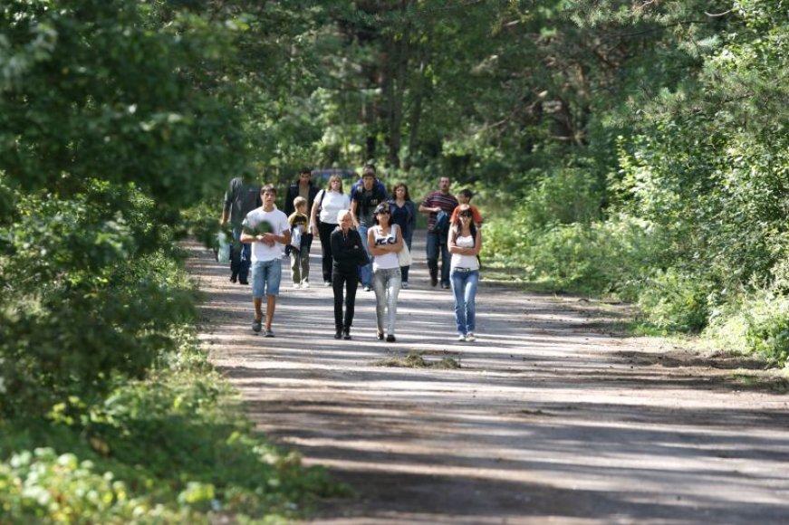 Į ekskursiją miestiečius kviečiantys ekologai tikisi, kad žmonės išmoks vertinti natūralius miškus.