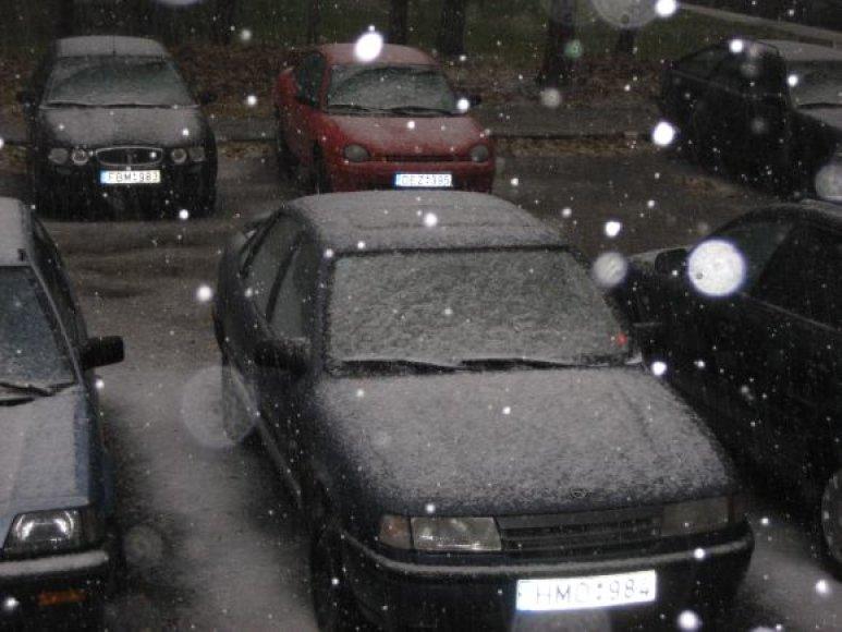 Sninga ir Kaune